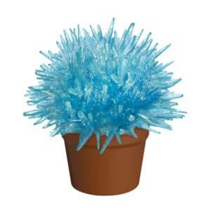 Crystal Cactus Blue