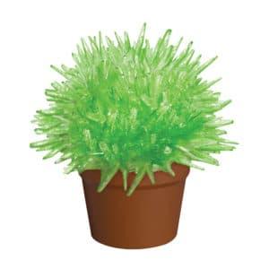 Crystal Cactus Green