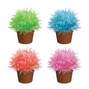 Crystal Cactus Group: Green, Blue, Orange, Pink