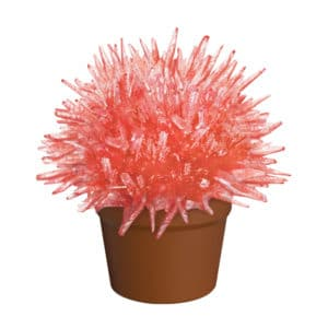 Crystal Cactus Red